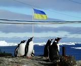 Полярники та полярниці привітали Україну з Новим роком!