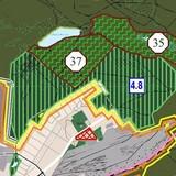 Місцевість ДВРЗ не межуватиме з лісом?
