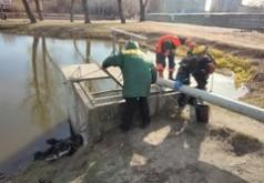 На ставку біля вулиці Довбуша почистили насос