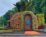 4 червня в парку `Перемога` відкриється виставка квітів
