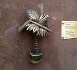 Австралійська пальма стала міні-скульптурою у Києві