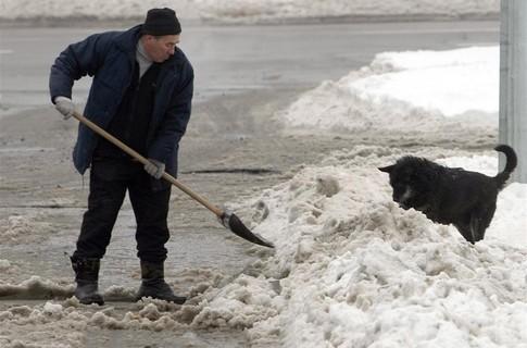 Двірник розчищає дорогу від снігу
