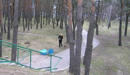 Частина учасників взялась за прибирання сходів і доріжки